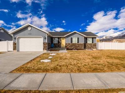 Hyrum Single Family Home For Sale: 1023 E Hyrum Blvd