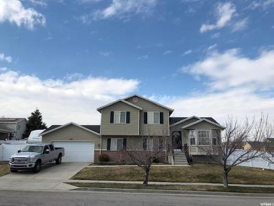 Salt Lake City Single Family Home For Sale: 5336 W Ridge Brook Way S