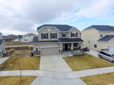 Utah County Single Family Home For Sale: 49 W Paper Bark St