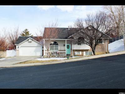 Single Family Home For Sale: 4392 W Dogwood Ln