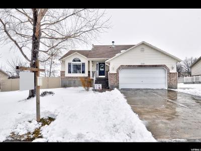 West Jordan Single Family Home For Sale: 5049 W Rock Ridge Ln S