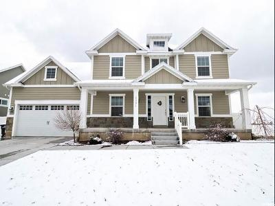 Utah County Single Family Home For Sale: 2091 E 800 S