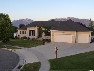 Salt Lake County Single Family Home For Sale: 11643 S Waterside Ct