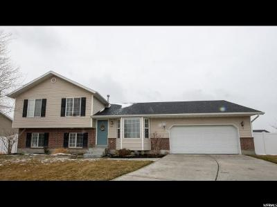 Lehi Single Family Home For Sale: 884 S Chappel Valley Loop