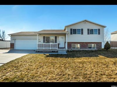 Lehi Single Family Home For Sale: 1599 N 1900 W