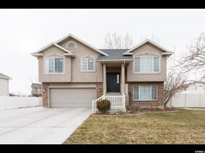 Lehi Single Family Home For Sale: 914 S Chappel Valley Loop