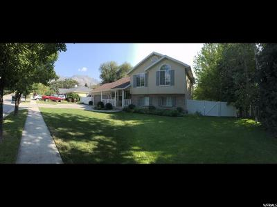 Alpine Single Family Home For Sale: 90 E Pioneer Dr N