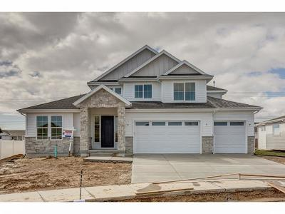 South Jordan Single Family Home For Sale: 4709 W Glenmoor View Circle S #3