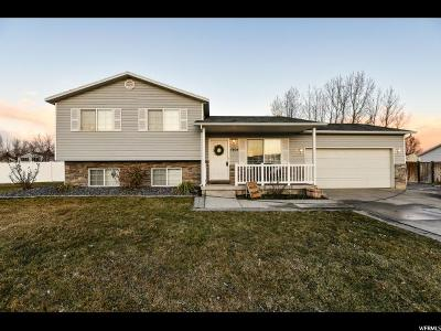Lehi Single Family Home For Sale: 1804 N 1975 W