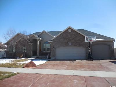 Salt Lake County Single Family Home For Sale: 12049 S Park Haven Ln