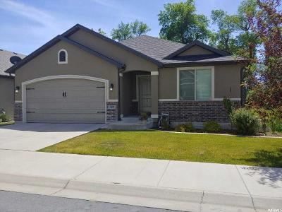 Layton Single Family Home For Sale: 429 N 1025 E