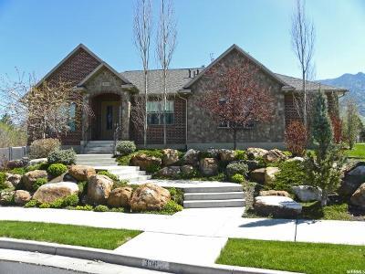Providence Single Family Home For Sale: 386 E Edgehill Dr