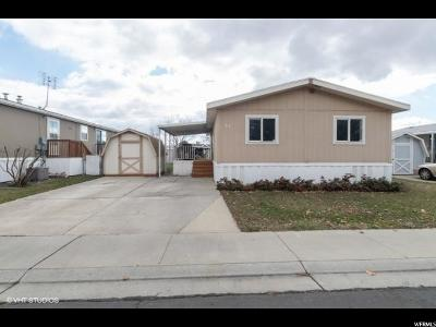 Springville Single Family Home For Sale: 1025 N 300 W #53
