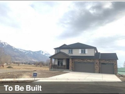 American Fork Single Family Home For Sale: 1275 E 500 N #326