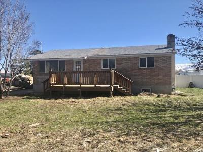 Grantsville Single Family Home For Sale: 313 Cooley St