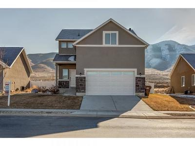 Eagle Mountain Single Family Home For Sale: 4214 N Lake Mountain Rd