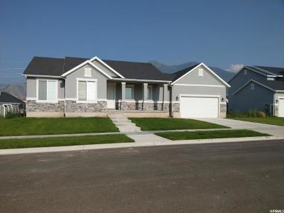 Spanish Fork Single Family Home For Sale: 182 N 2750 E