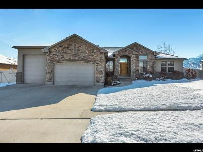Santaquin Single Family Home For Sale: 1087 S Vista Ridge Dr W