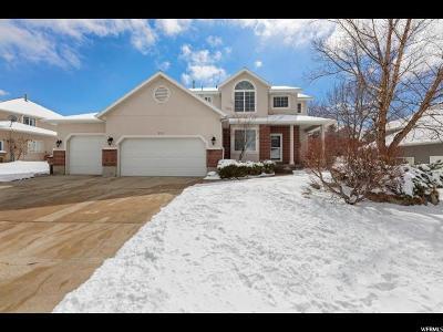 Salt Lake County Single Family Home For Sale: 572 E Rocky Ln S