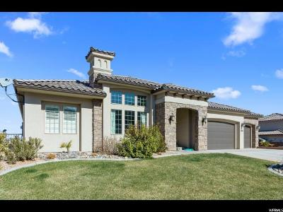 St. George Single Family Home For Sale: 2893 E Auburn Dr