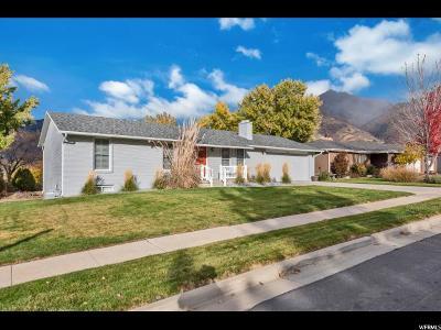 Sandy Single Family Home For Sale: 8863 S Alta Canyon Dr E