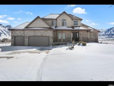 Erda Single Family Home For Sale: 1075 E Tanglewood Rd N