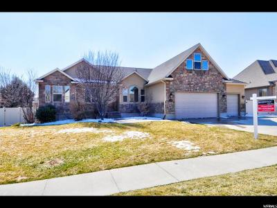 Herriman Single Family Home For Sale: 6203 W Freedom Hill Way S