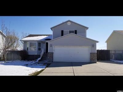 Magna Single Family Home For Sale: 3603 S Mason Vista Way W