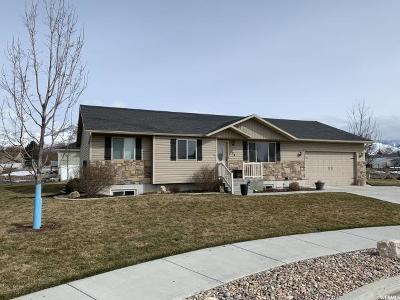 Smithfield Single Family Home For Sale: 134 S 380 W