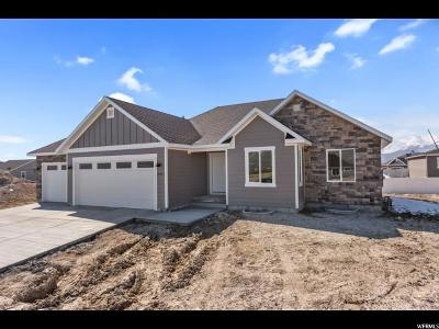 Eagle Mountain Single Family Home For Sale: 4921 Sage Park Dr Dr