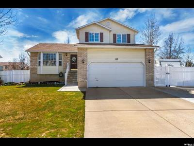 Kaysville Single Family Home For Sale: 413 W Clover Meadow Rd