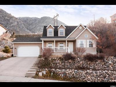 Springville Single Family Home For Sale: 834 N 600 E