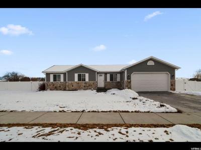Smithfield Single Family Home For Sale: 508 W 230 N