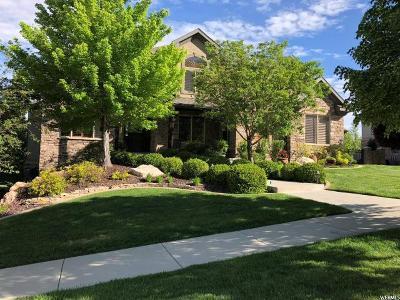 Draper Single Family Home For Sale: 1881 E Somerset Ridge Dr