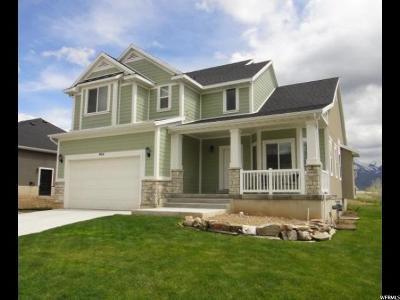 Layton UT Single Family Home For Sale: $429,900