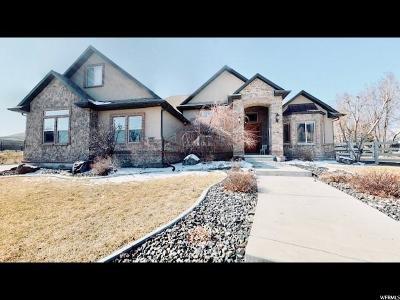 Herriman Single Family Home For Sale: 6087 W Desert Star Ln