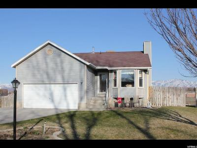West Valley City Single Family Home For Sale: 3731 S 4745 W