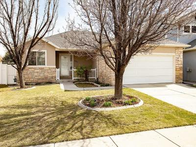West Jordan Single Family Home For Sale: 6915 S Denby Dale Rd