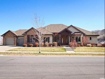 Draper Single Family Home For Sale: 1311 E Maple Park Ct