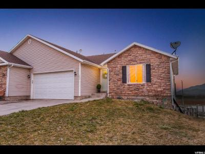 Santaquin Single Family Home For Sale: 257 N 700 E