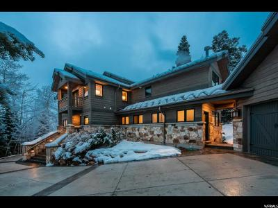Park City Single Family Home For Sale: 2350 W Red Pine Ct