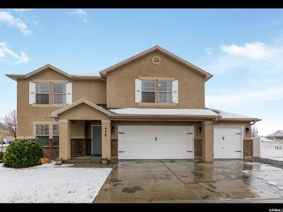 Utah County Single Family Home For Sale: 946 Gander Way