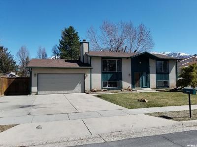 Sandy Single Family Home For Sale: 10823 S Granite Dr E