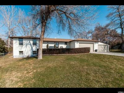 Sandy Single Family Home For Sale: 229 E 10430 S