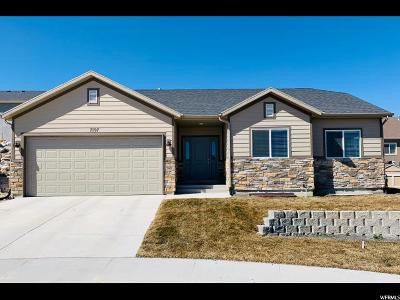 Utah County Single Family Home For Sale: 7197 N Pawnee Ct