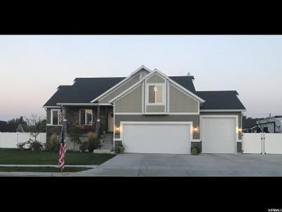 Weber County Single Family Home For Sale: 2407 N 4050 W