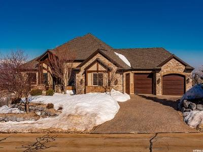 Single Family Home For Sale: 1919 E Deep Woods Dr