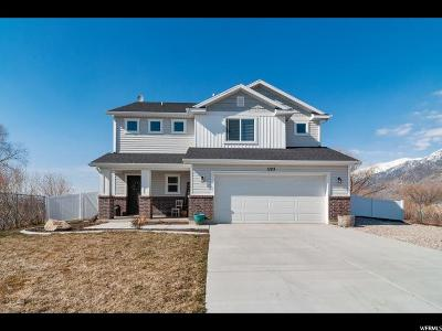 Brigham City Single Family Home Under Contract: 1193 N 725 W