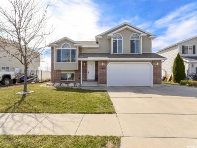 Davis County Single Family Home For Sale: 3855 W 850 S