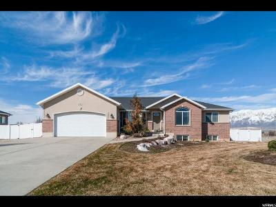 Weber County Single Family Home For Sale: 3324 W 1700 N